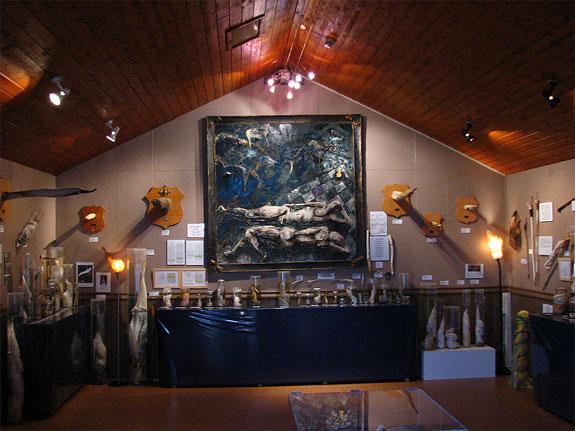 iceland phallus museum 2 The Icelandic Phallological Museum