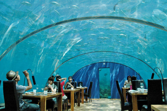 Eat Underwater in the Maldives