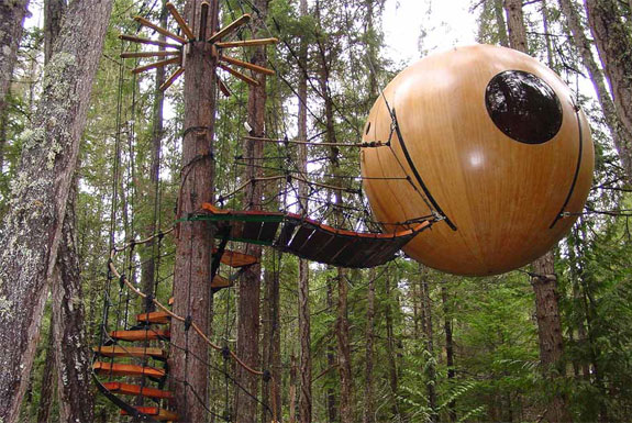 Image result for free spirit spheres vancouver