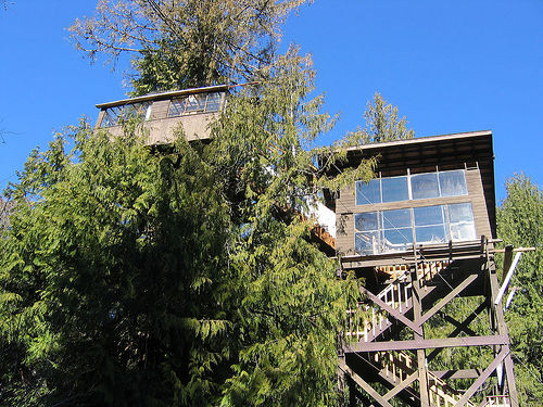 creek4 Cedar Creek Treehouse Hotel