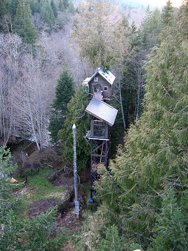 creek5 Cedar Creek Treehouse Hotel