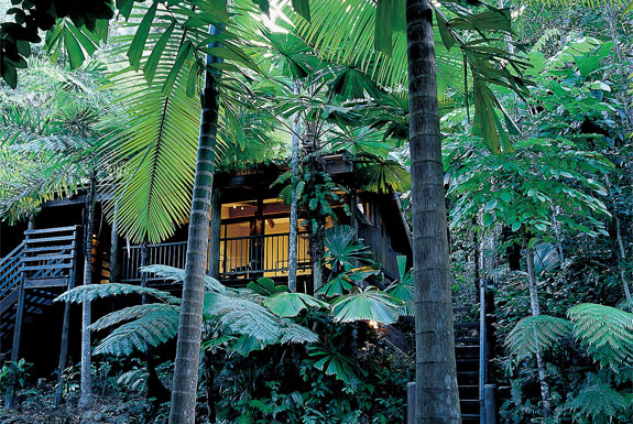 Luxury and Aborigines in the Australian Jungle