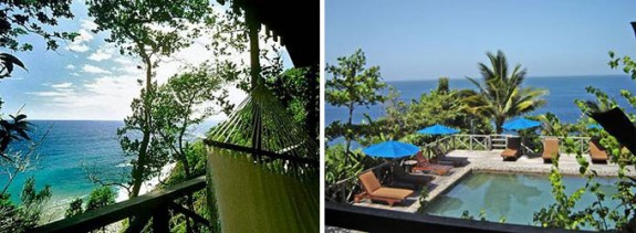 jung4 575x211 Cool Caribbean: Dominica