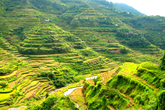 ban1 Top 10 Destinations <br>For Rice Terrace Travel