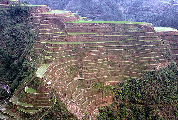 World's Best Rice Terraces: Banaue