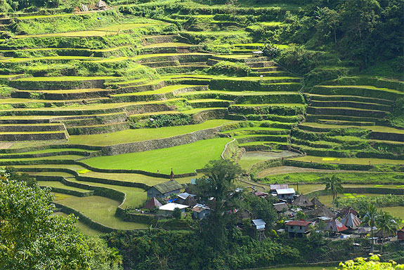 ban6 Top 10 Destinations <br>For Rice Terrace Travel