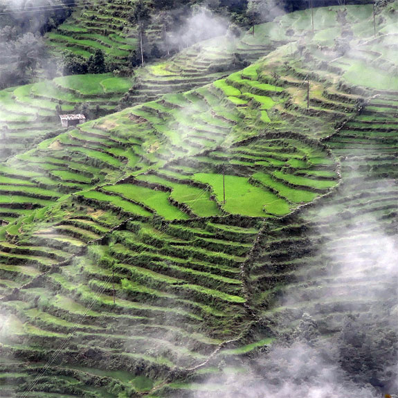 nepal5 Top 10 Destinations <br>For Rice Terrace Travel