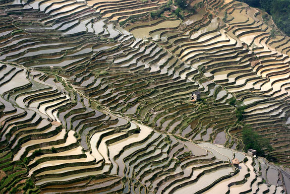 Top 10 Destinations <br>For Rice Terrace Travel