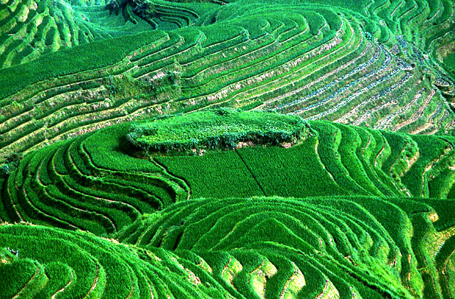yunnan6 Top 10 Destinations <br>For Rice Terrace Travel