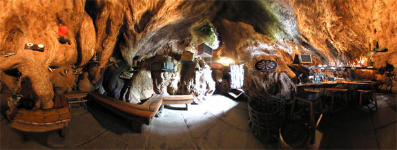 baobab bar 1 The Worlds Only Pub <br>Thats Inside a Tree