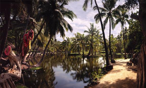 kona 3  Simply Luxurious Hawaii Beach Huts