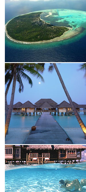 honeymoon maldives No Shoes. No News. <br>Pure, Private, Beach Relaxation.
