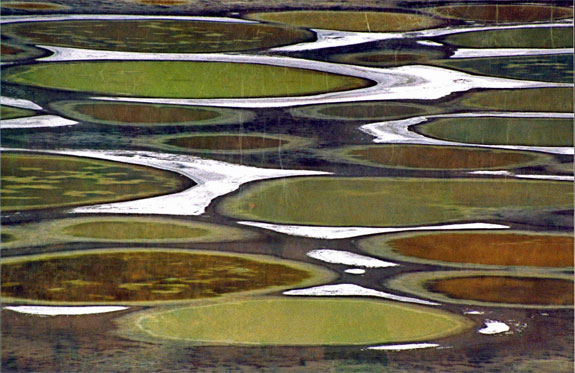 spotted lake 1 Spotting the Spotted Lake