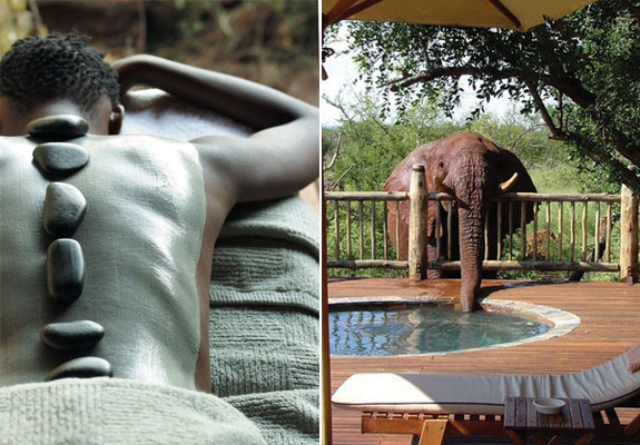 Etali 1 7 Amazing & Luxurious <br>South Africa Safari Lodges