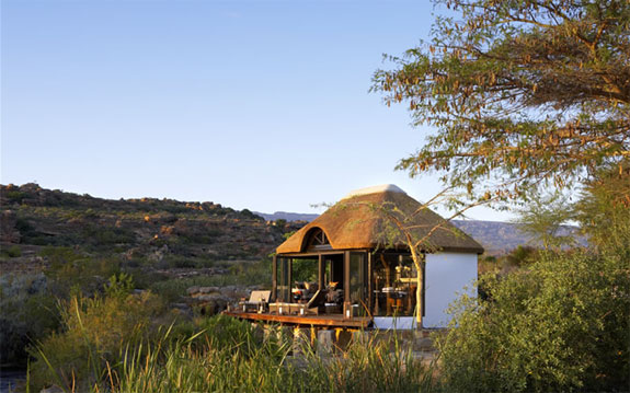 bushmans 3 7 Amazing & Luxurious <br>South Africa Safari Lodges