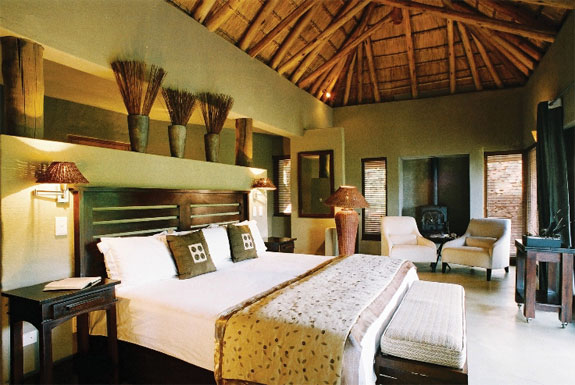 elati 2 7 Amazing & Luxurious <br>South Africa Safari Lodges