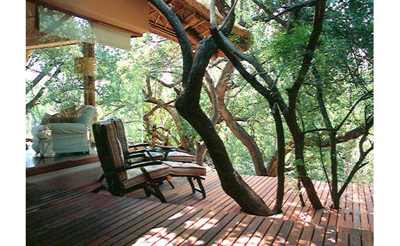 makanyane 21 7 Amazing & Luxurious <br>South Africa Safari Lodges