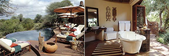 makanyane 31 7 Amazing & Luxurious <br>South Africa Safari Lodges