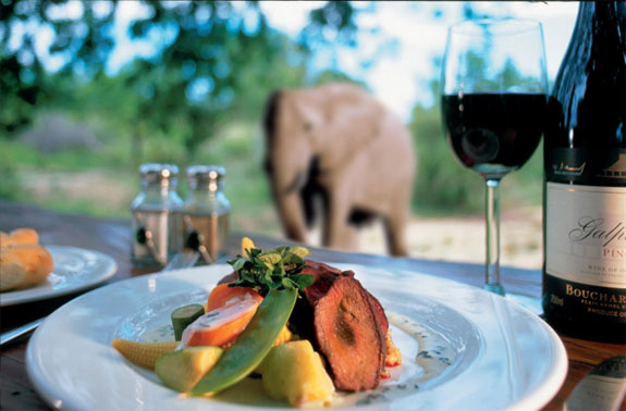ulusaba 6 7 Amazing & Luxurious <br>South Africa Safari Lodges