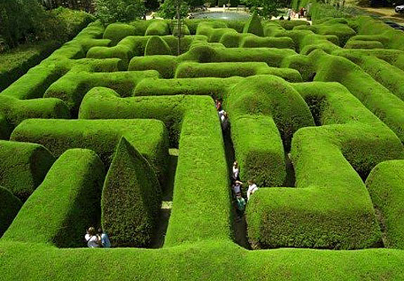ashcombe maze 1 A Maze Ing