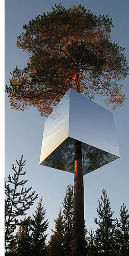 invisible treehouse s The Invisible Treehouse Hotel