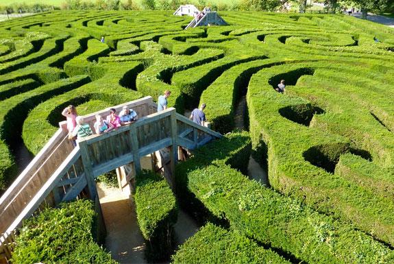 longleat 1 A Maze Ing
