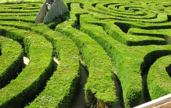 longleat 2 A Maze Ing