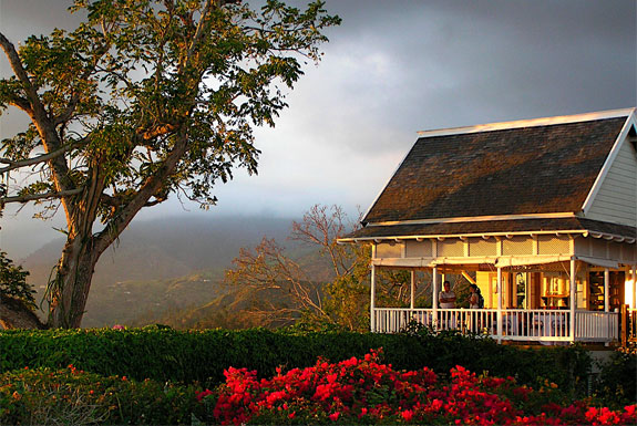 3 Hilltop Hotels with Wonderful Views Upon Jamaica