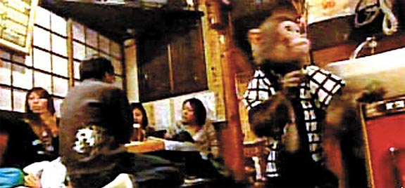 japan monkey waiter 1 Monkey See, Monkey Wait Tables