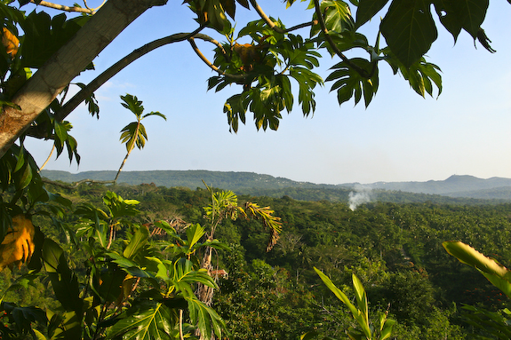 tamarind house 4 3 Hilltop Hotels with Wonderful Views Upon Jamaica