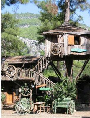 The Tree House Hotel. Kadir's Tree House Hostel;