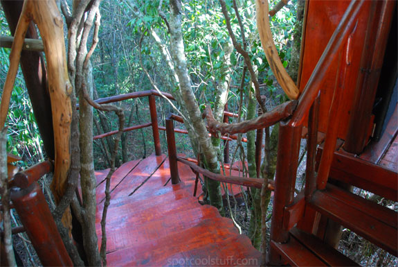 teniqua treetops 4 5 Wonderfully Earthy Glamping Sites