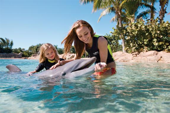 discovery cove orlando 2 Discovery Cove: Orlandos Un Theme Park