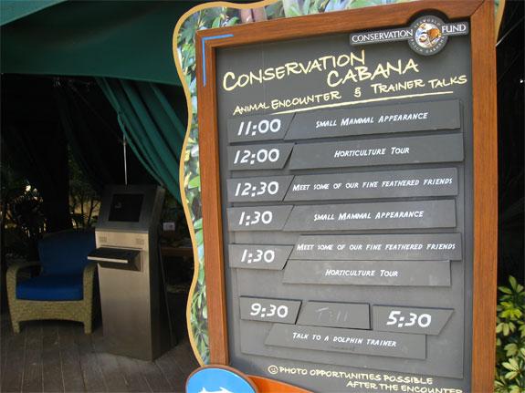 dicovery cove orlando 10 Discovery Cove: Orlandos Un Theme Park