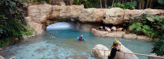 dicovery cove orlando 6 Discovery Cove: Orlandos Un Theme Park