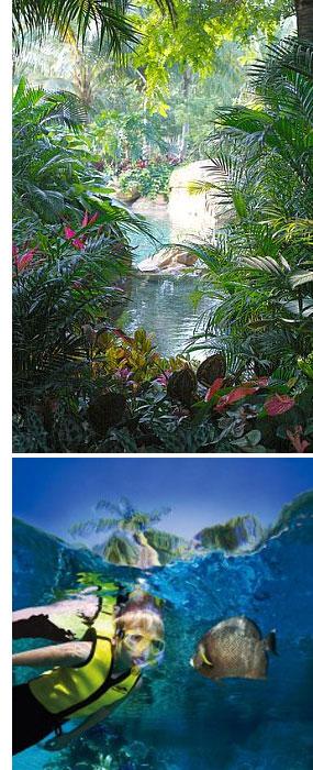 discovery cove orlando s Discovery Cove: Orlandos Un Theme Park