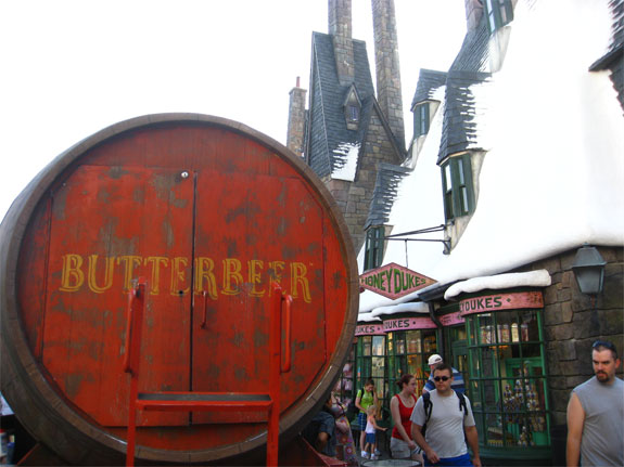 harry potter orlando 13 The Magical Way into Harry Potters Wizarding World