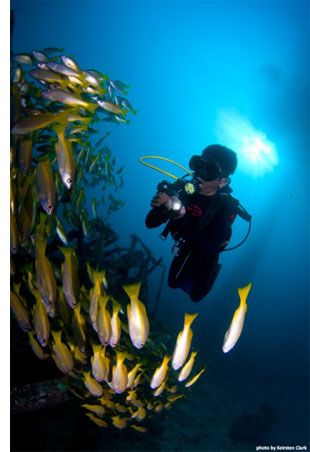 sipadan scuba diving Go Scuba Diving <br>From an Oil Rig Hotel