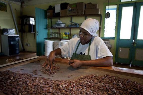 grenada chocolate 12 Divine Chocolate Shops