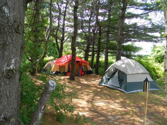 Tent Glamping Ny & Gatherwild Ranch Gl&ing NY