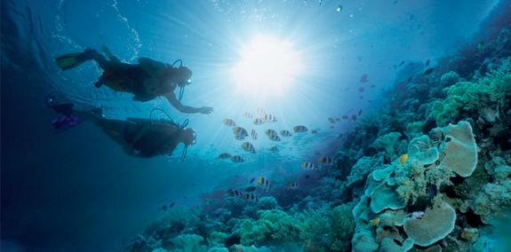 free scuba diving sandals jamaica The Best Sandals Resort in Jamaica