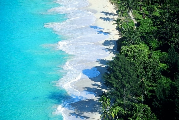 Sponsored Video: Get Hired to Map a Tropical Paradise