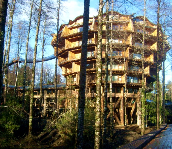 nothofagus hotel chile The Crazy Cool Treehouse Like Hotels of Huilo Huilo
