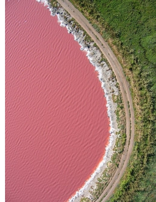 senegal pink lake s Pink Lakes of the World