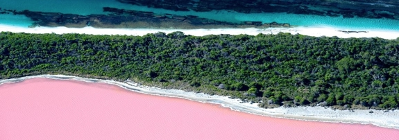 lake hiller australia top Pink Lakes of the World