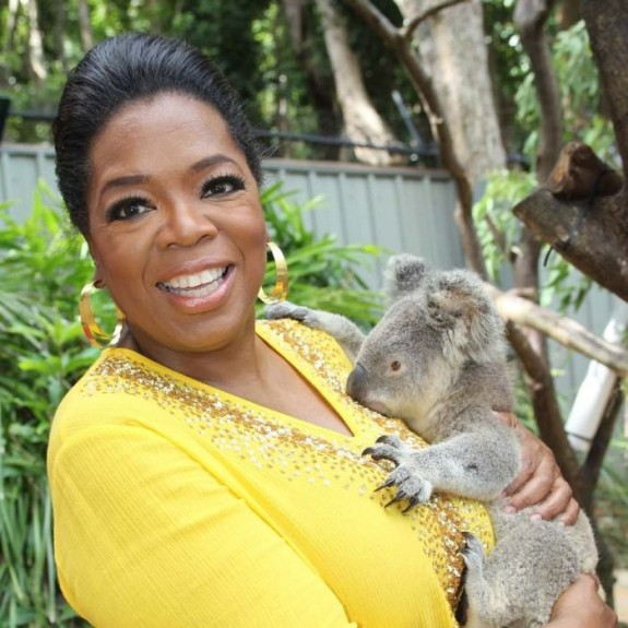oprah koala cuddle 575x575 10 Reasons to Visit Hamilton Island, Australia