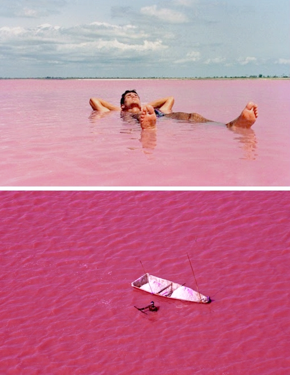 senegal pink lake retba travel Pink Lakes of the World