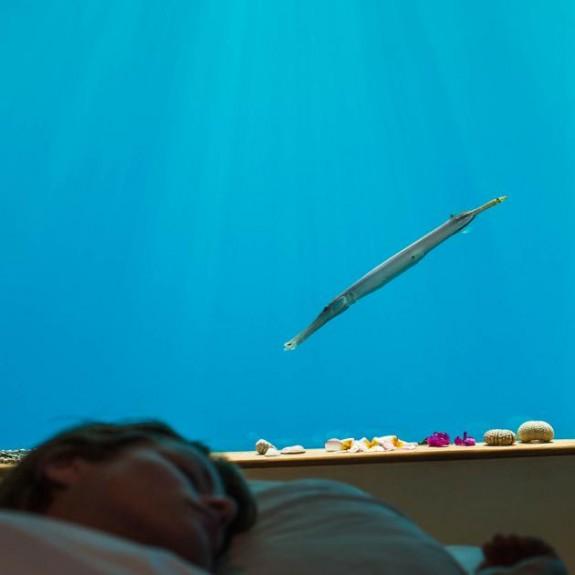manta resort pemba review in2 575x575 Total Luxury Half Underneath the Indian Ocean