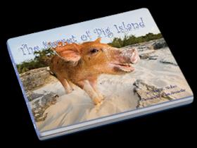 secret of pig island bahamas This Little Piggy Goes Swimming