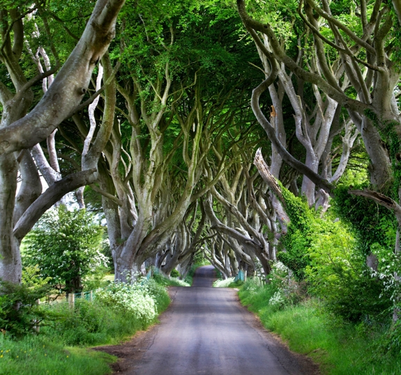 game of thrones filming northern ireland 1 Travel to Game of Thrones Filming Locations